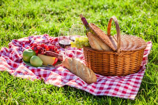 picnic basket on a checkered tablecloth on grass outdoors - pasto al sacco foto e immagini stock