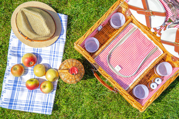 Picnic basket on green sunny lawn in the park stock photo
