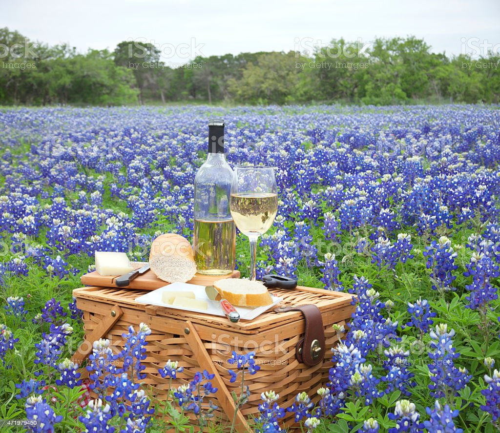 Picnic basket, wine, cheese and bread in bluebonnet field stock photo