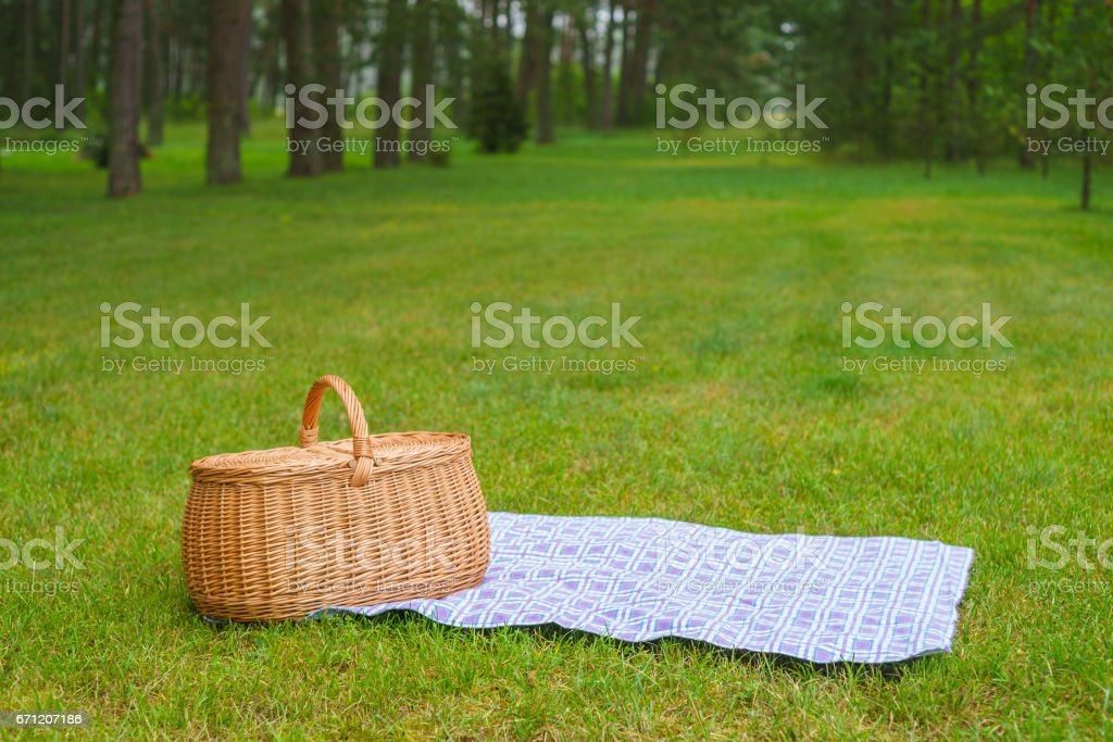 Picnic basket with blue white checkered napkin on grass – Foto