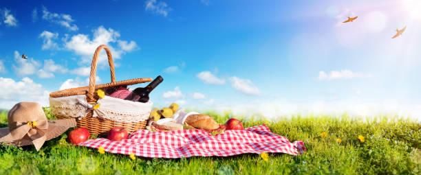 picnic - basket with bread and wine on meadow - picnic imagens e fotografias de stock