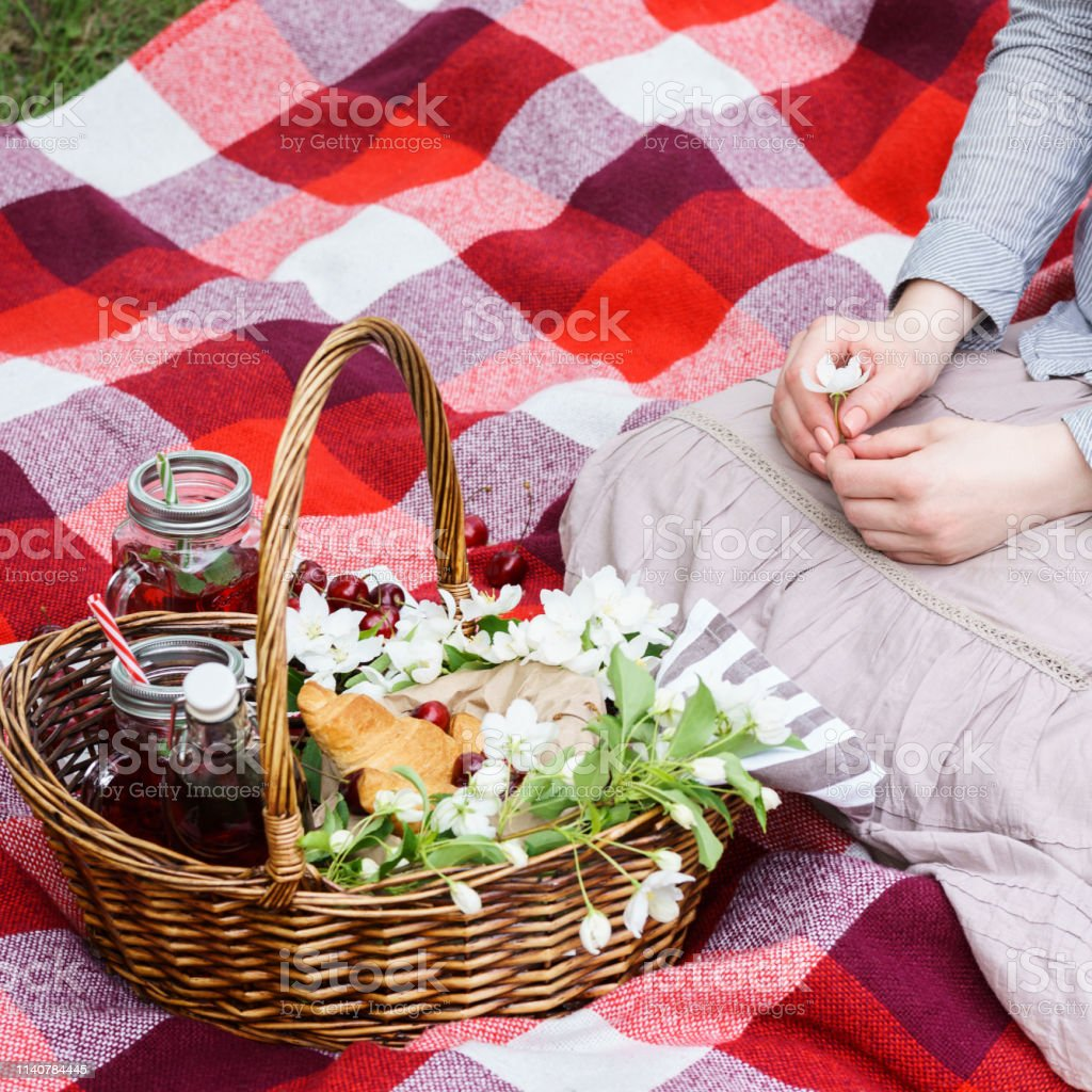 Picnic basket with food and young woman sitting on red blanket in a...
