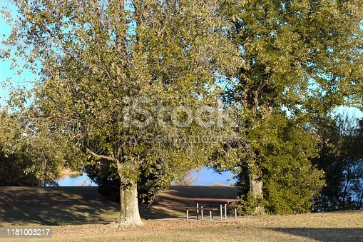 1048926386 istock photo Picnic bench in a park 1181003217