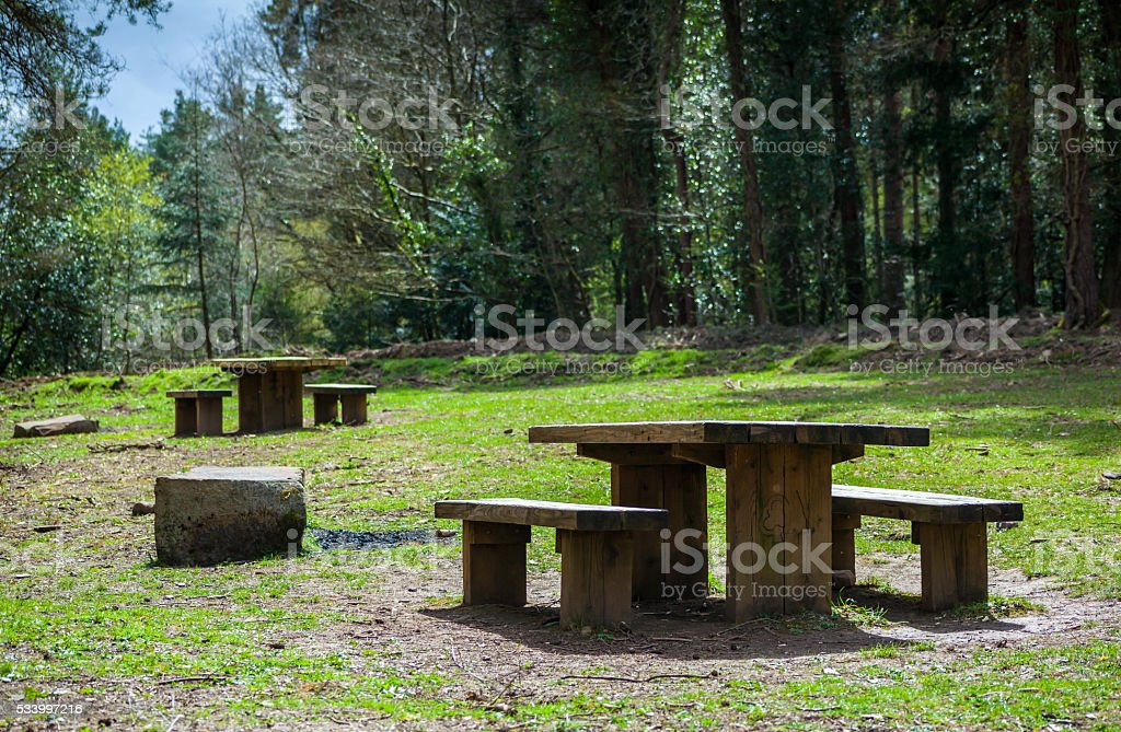 Picnic Benches stock photo
