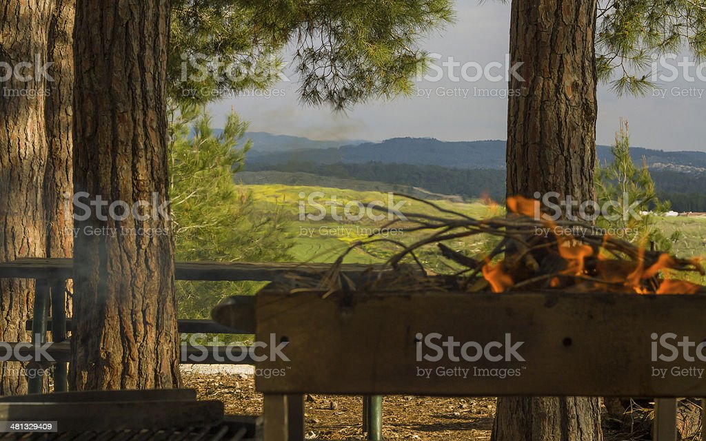 Picnic bonfire in the summer wood or park . stock photo