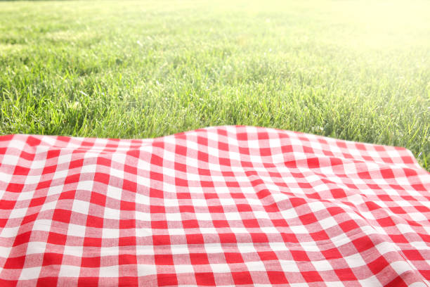 Picnic cloth on green grass background empty space. Green grass red checked picnic cloth top view background.Food advertisement design backdrop. picnic stock pictures, royalty-free photos & images