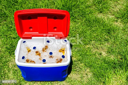 istock Picnic cooler box with beer bottles 600067310