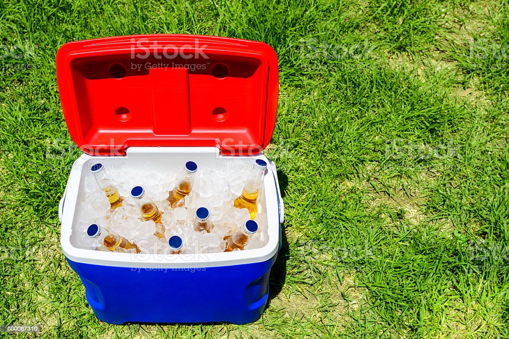 Picnic cooler box with beer bottles stock photo