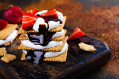 istock Picnic dessert smores with marshmallow, graham crackers, strawberry and chocolate sauce 801239526