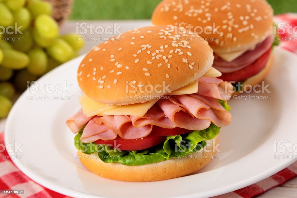 Picnic ham and cheese bun sandwiches royalty-free stock photo
