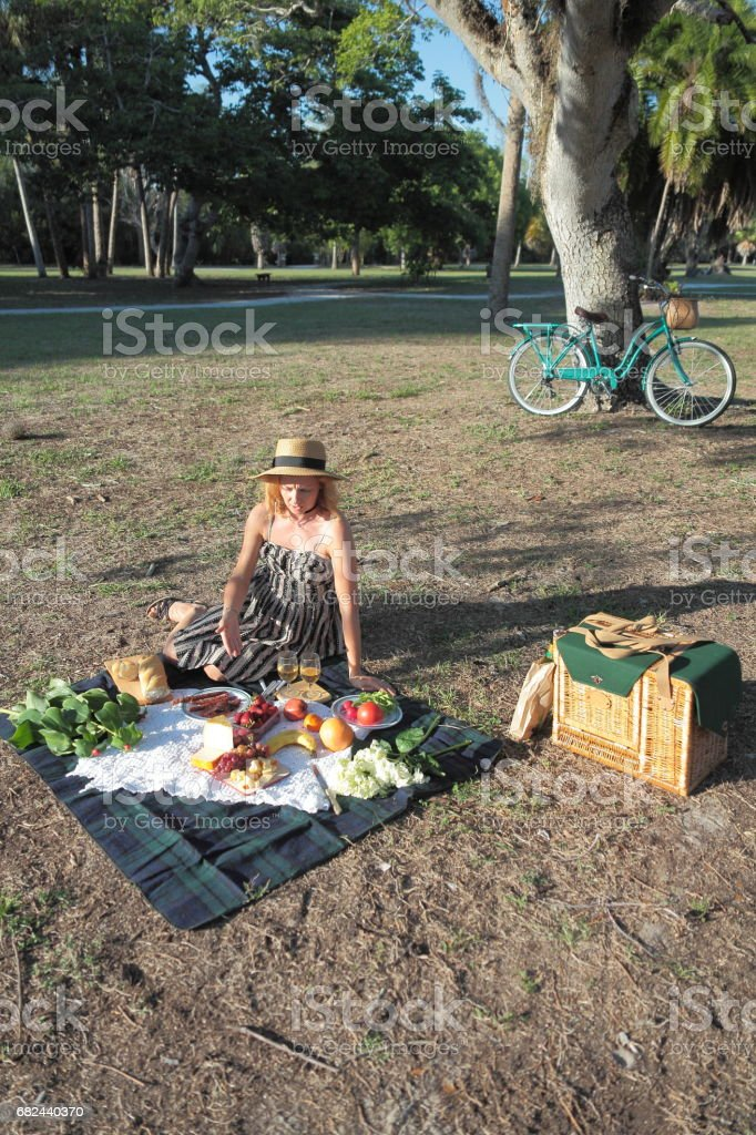 Picnic in a park. royalty-free stock photo