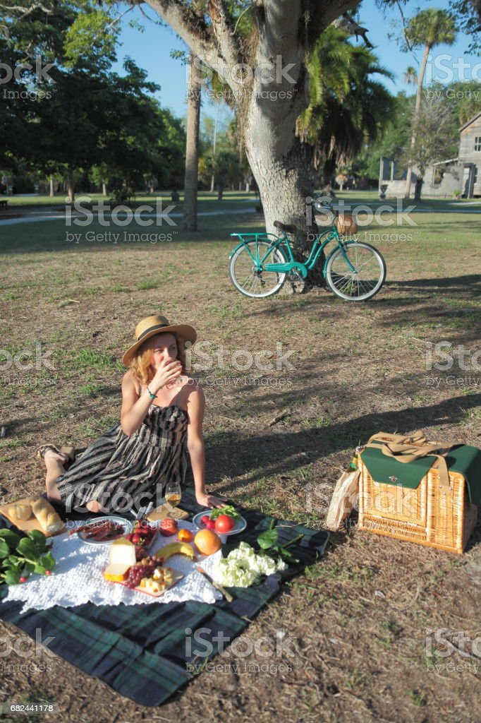 Picnic in a park. 免版稅 stock photo