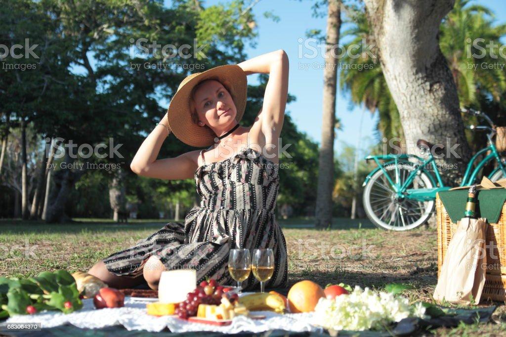 Picnic in a park. foto de stock royalty-free