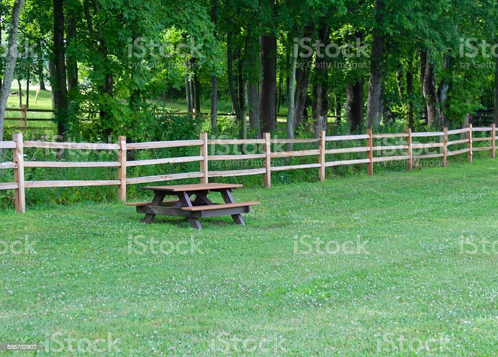 Picnic in the Park royalty-free stock photo