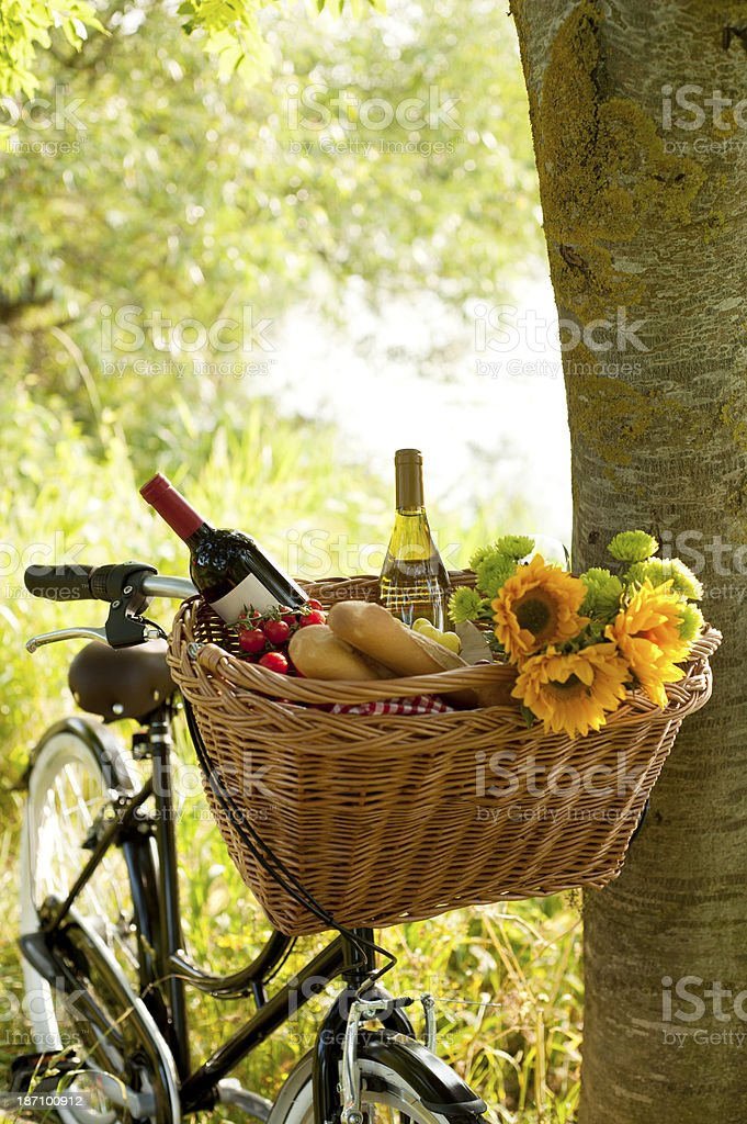 Picnic lunch packed in a bicycle basket royalty-free stock photo