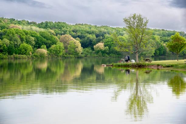 picnic near lake arthur. - moraine стоковые фото и изображения