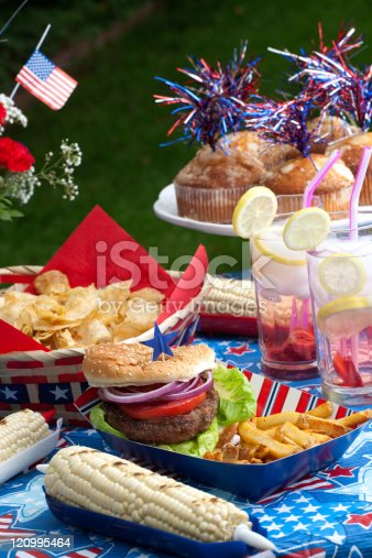 534317162 istock photo Picnic on 4th of July 120995464
