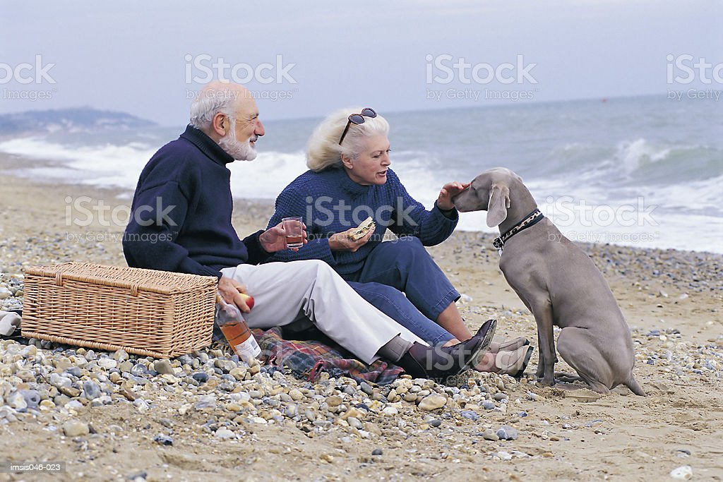 Picnic on the beach royalty-free stock photo