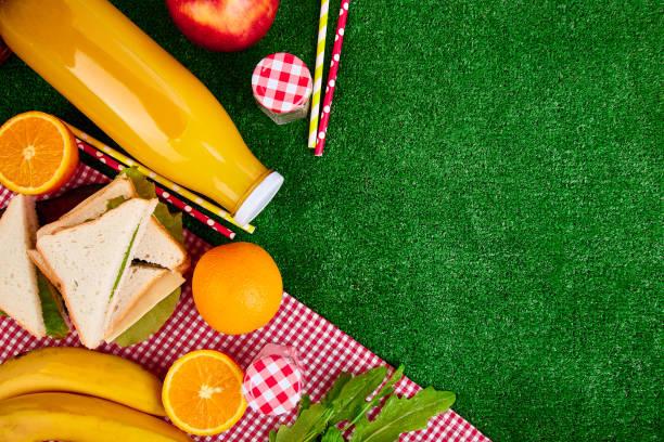 Picknick auf dem Rasen. Rot aktiviert Tischdecke, Korb, Gesundes Essen Sandwich und Obst, Orangensaft. Ansicht von oben.  Sommerzeit-Rest. Flach zu legen. – Foto