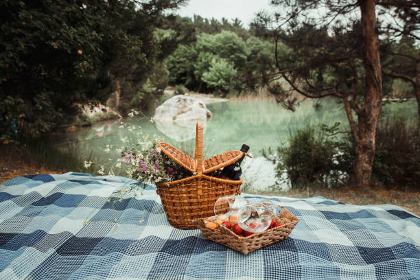 picnic picnic on the lake in the mountains picnic stock pictures, royalty-free photos & images