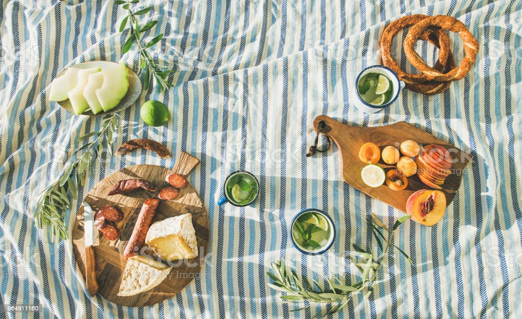 Picnic set with fruit, cheese, toast, honey, wine with a wicker basket and a blanket. Beautiful summer background with girl and products on nature royalty-free stock photo