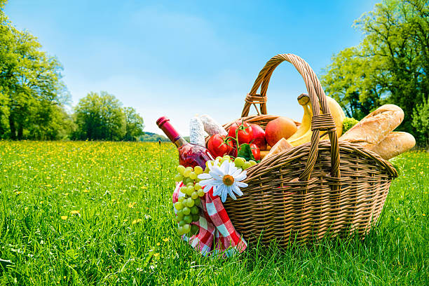 picnic setting on meadow stock photo