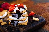 istock Picnic smores dessert 841836348