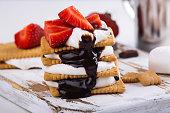 istock Picnic smores dessert 841836590