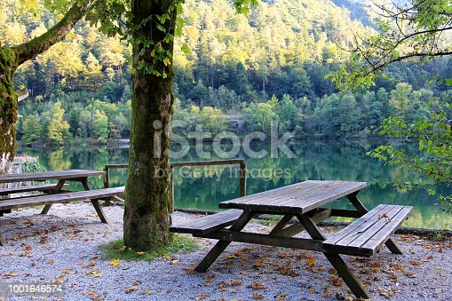 Picnic table and bench at a bautiful lake shore with a forest in the background
