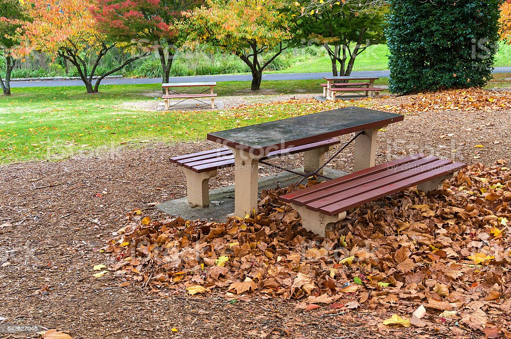Peachy Picnic Table And Benches In An Autumn Park Stock Photo Caraccident5 Cool Chair Designs And Ideas Caraccident5Info