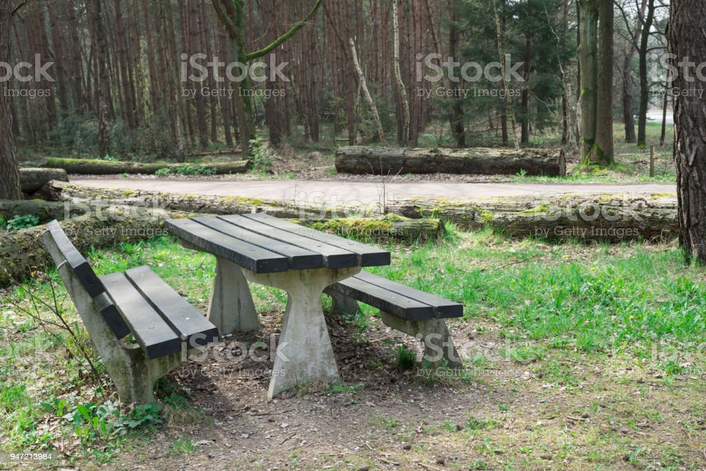 picnic table and hiking path, nature reserve De Malpie, Valkenswaard in The Netherlands stock photo