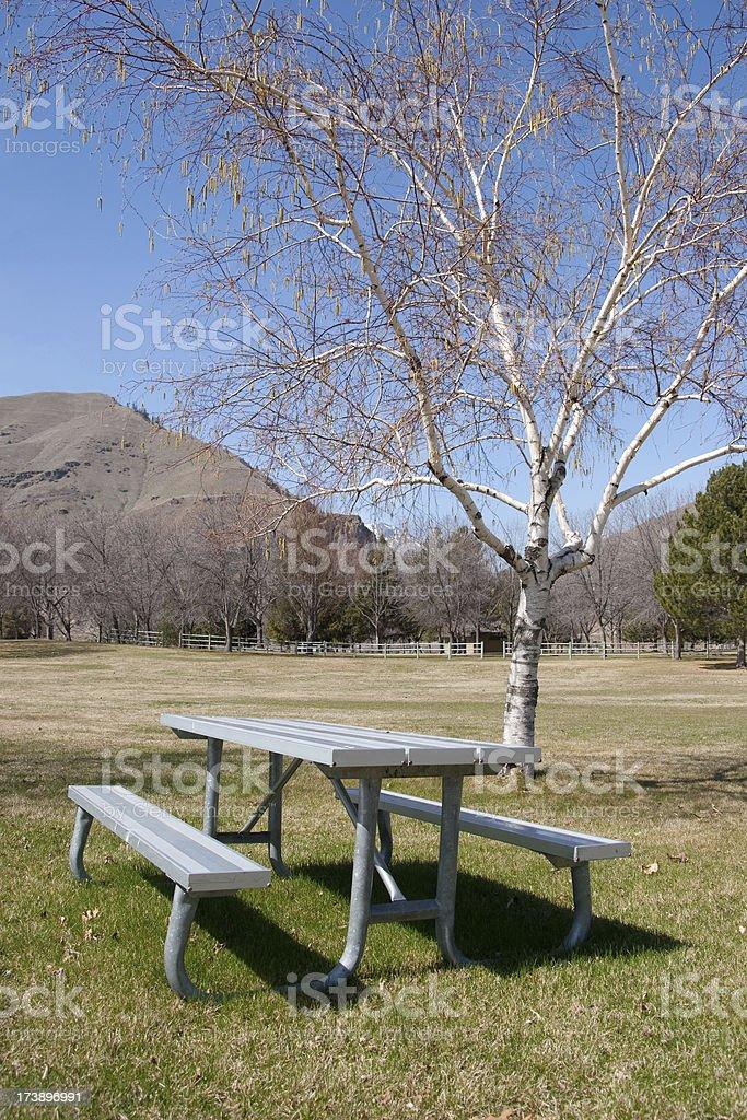 Picnic table at park stock photo