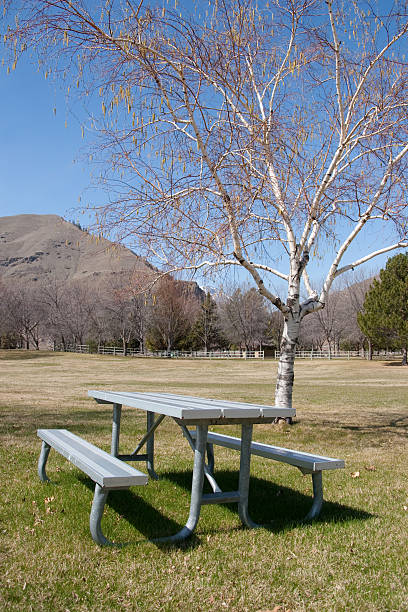 picnic table at park - spring stock photos and pictures