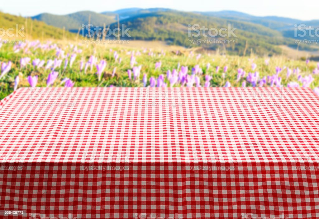 Picnic Table Covered With Red And White Checkered Tablecloth Spring  Royalty Free Stock Photo