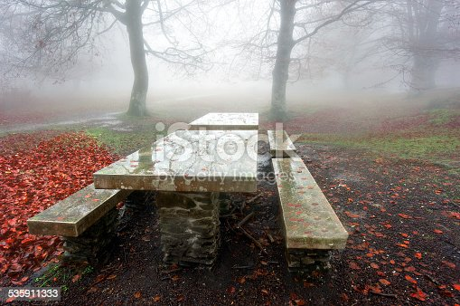 shiny picnic table in foggy forest