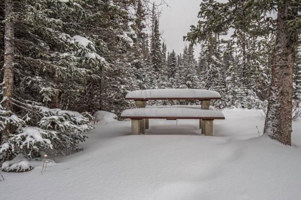 picknicktisch im winter schnee - picknick tisch kühler stock-fotos und bilder