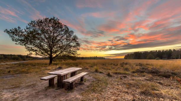 Picnic table under beautiful sunset stock photo
