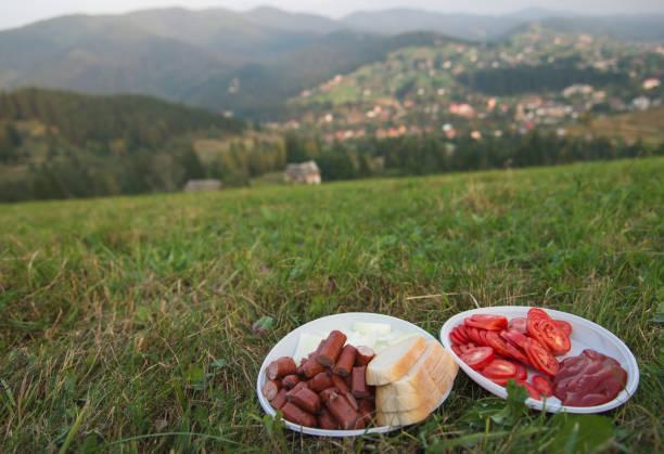 picknick. die landschaft der karpaten. - gorilla brot stock-fotos und bilder