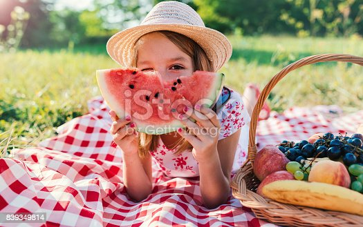 istock Picnic time. Little girl enjoying in picnic. Nature, lifestyle 839349814
