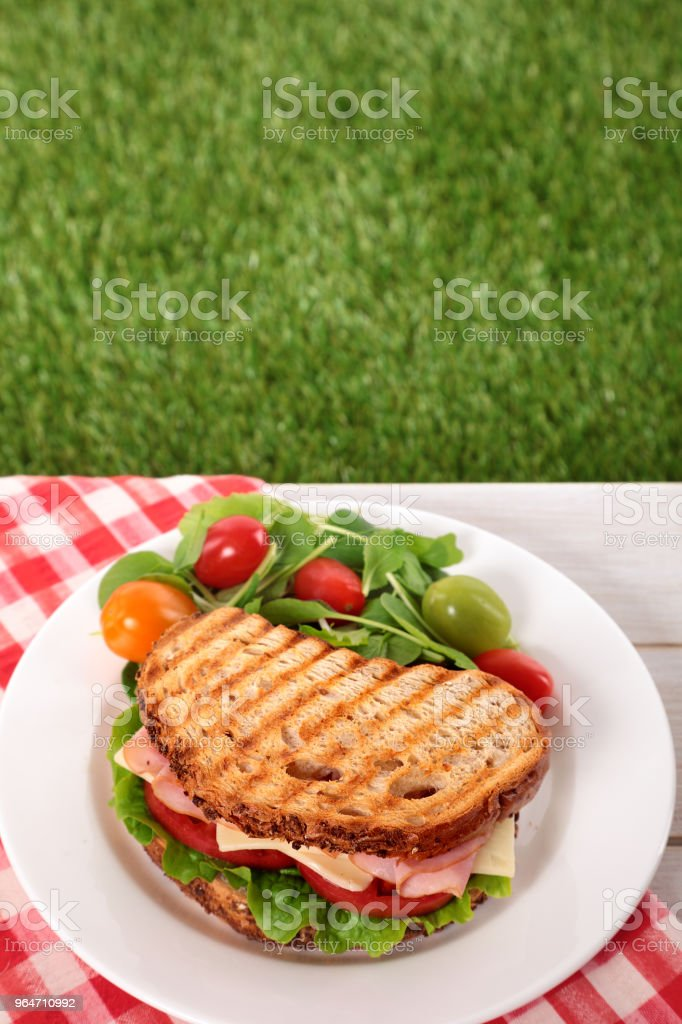 Picnic toasted ham and cheese sandwich on outdoor table royalty-free stock photo