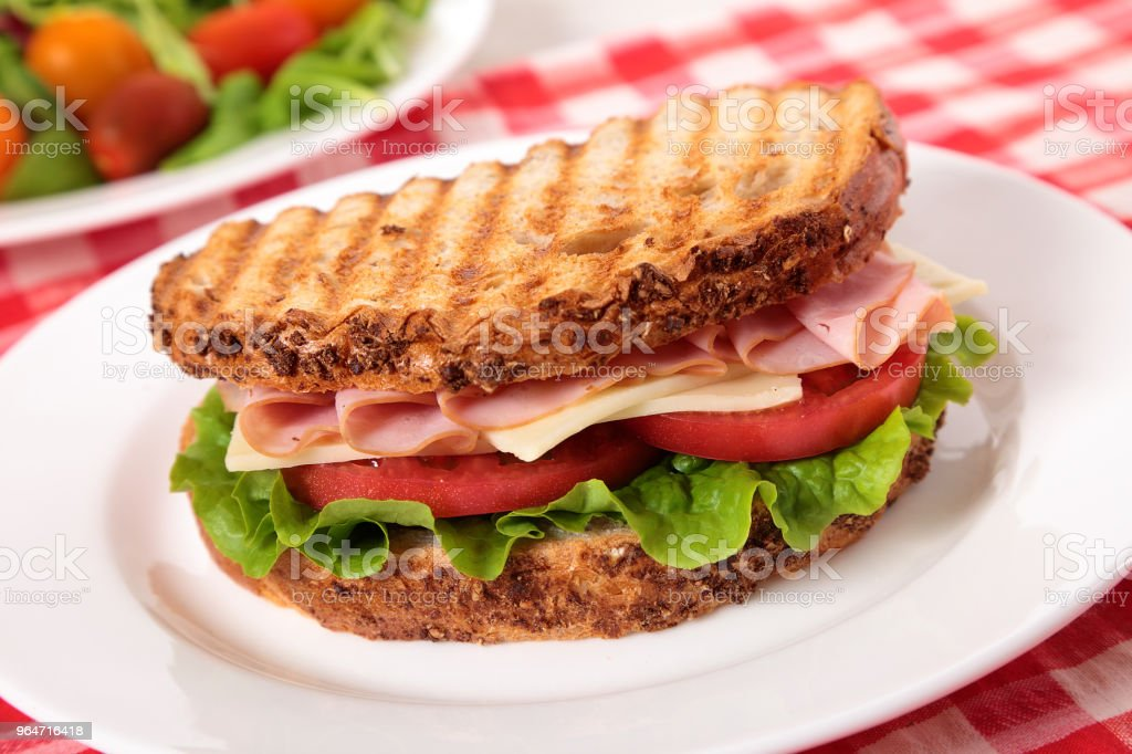 Picnic toasted ham and cheese sandwich with salad royalty-free stock photo