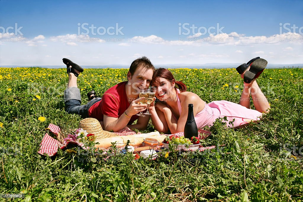 Picnic VII royalty-free stock photo