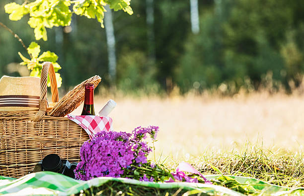 Picnic with red and white wine stock photo