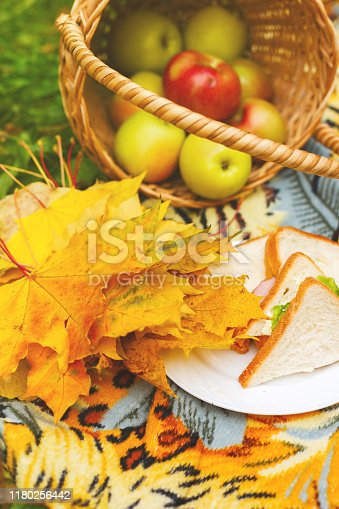 picnic with sandwiches and a basket of apples in the autumn garden. Yellow autumn colors