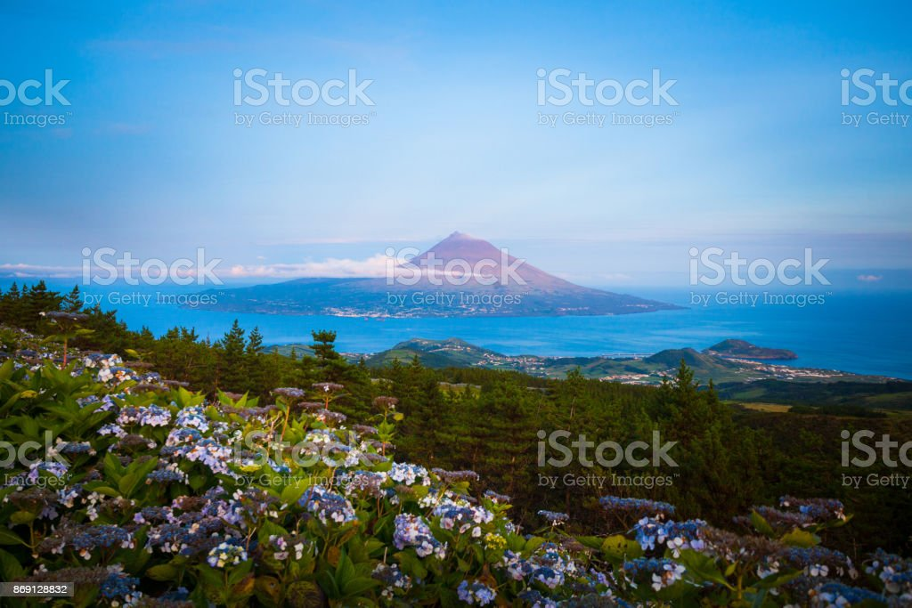 Pico Island, Azores stock photo