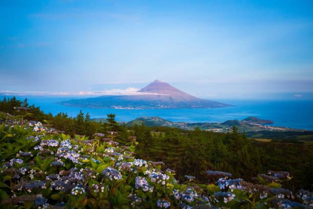 Pico Island, der Azoren – Foto