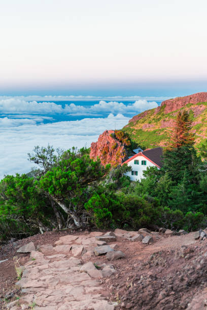 Pico Ruivo house on a sunset in Santana, Madeira island, Portugal Pico Ruivo house on a sunset in Santana, Madeira island, Portugal ilha da madeira stock pictures, royalty-free photos & images
