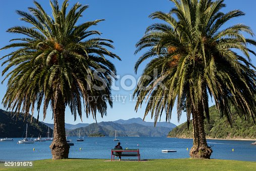 istock Picton Harbor and Pier, South Island, New Zealand 529191675