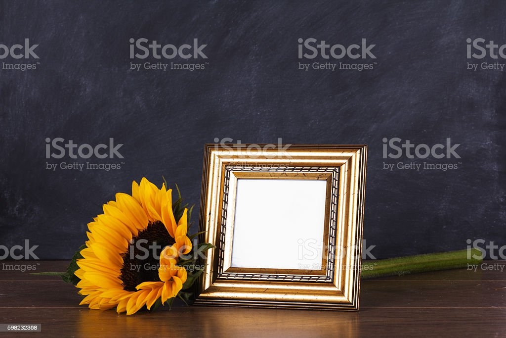 Picture frame and sunflower against a dirty blackboard backgroun foto royalty-free