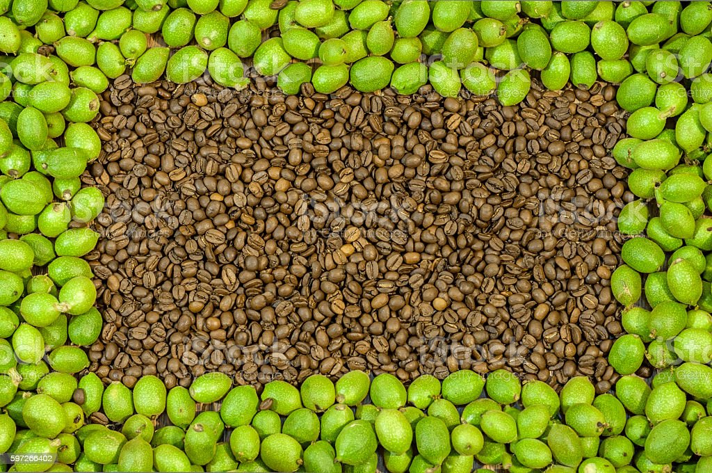 Picture frame made of green walnuts and lot coffee bean royalty-free stock photo